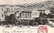 Wellington Hospital and grounds, from the library's Postcard Collection